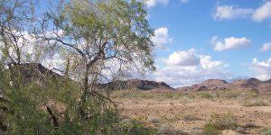 Yuma, AZ Sunshine and Other Climate Data